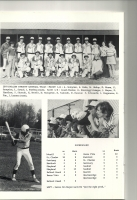 Baseball (2).jpg